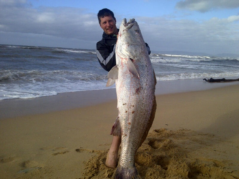 46 kg jew fish caught in riversdale south africa 4x4 for Big island fishing